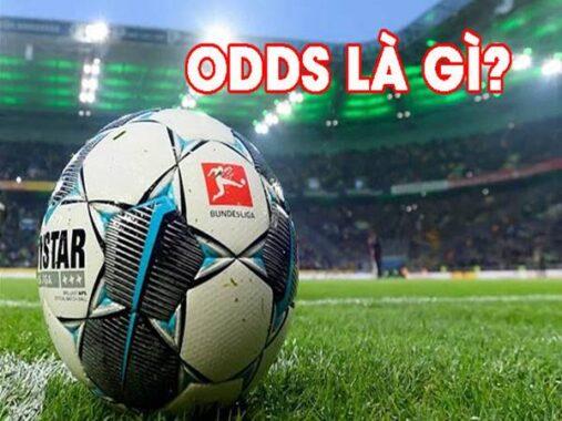 Odds là gì? Các tỷ lệ Odds cơ bản trong cá cược bóng đá