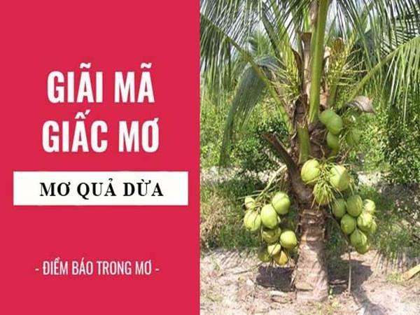 Mơ thấy quả dừa điềm gì? Đánh con gì dễ trúng?